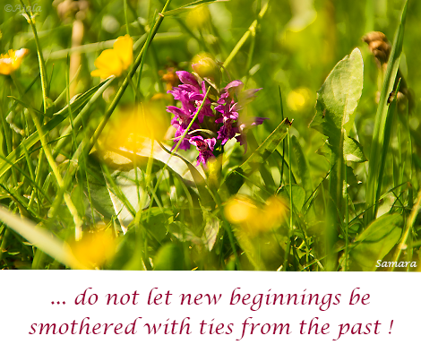 do-not-let-new-beginnings-be-smothered-with-ties-from-the-past