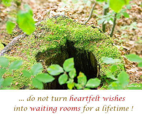 do-not-turn-heartfelt-wishes-into-waiting-rooms-for-a-lifetime