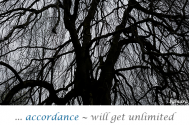 accordance--will-get-unlimited-access-to-principles