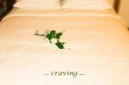 craving-feeds-inherent-voidness