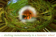 dashing-monotonously-in-a-hamster-wheel-diverge-you-from-systemic-questions
