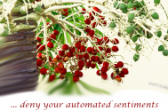 deny-your-automated-sentiments-the-power-to-be-activated