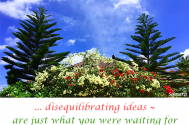 disequilibrating-ideas--are-just-what-you-were-waiting-for-to-be-in-control