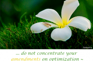 do-not-concentrate-your-amendments-on-optimization--aim-for-a-paradigm-shift-instead
