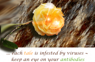 each-tale-is-infested-by-viruses--keep-an-eye-on-your-antibodies-before-adapting-any-of-them