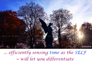 efficiently-sensing-time-as-the-SELF--will-let-you-differentiate-any-deliberate-refusal