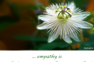 empathy-is-conducive-to-corresponding-approaches
