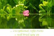 exceptional-reflections--will-brief-you-on-mental-coherencies