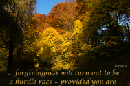 foregiveness-will-turn-out-to-be-a-hurdle-race--provided-you-are-denying-your-own-participation