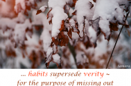 habits-supersede-verity--for-the-purpose-of-missing-out-on-situative-moments-reality