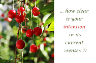 how-clear-is-your-intention-in-its-current-sense