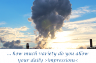 how-much-variety-do-you-allow-your-daily-impressions-to-come-up-with