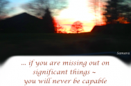 if-you-are-missing-out-on-significant-things--you-will-never-be-capable-of-finding-the-essential