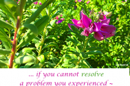 if-you-cannot-resolve-a-problem-you-experienced--reassess-the-problem-itself