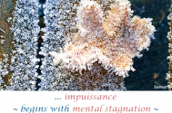 impuissance--begins-with-mental-stagnation--ending-up-in-infinite-loops
