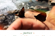 justice--is-a-soliloqui-of-hypocritical-love