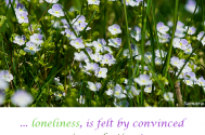 loneliness-is-felt-by-convinced--imperfection!