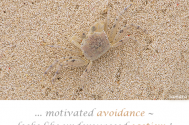 motivated-avoidance--looks-like-underexposed-egotism