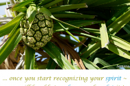 once-you-start-recognizing-your-spirit--you-will-be-able-to-release-and-sculpt-it