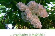 originality-is-indelible