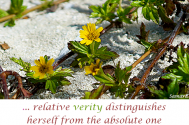 relative-verity-distinguishes-herself-from-the-absolute-one-by-concealed-realities