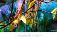 repression-ties--treatment-resolves