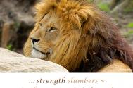 strength-slumbers--in-the-greates-imbalance