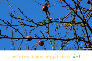 whatever-you-might-have-lost--your-life-is-still-worth-living