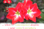 when-consciousness-deepens--your-center-s-periphery-will-open