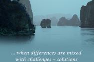 when-differences-are-mixed-with-challenges--solutions-shall-be-blocked