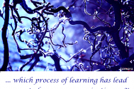 which-process-of-learning-has-lead-you-out-of-your-prevarications