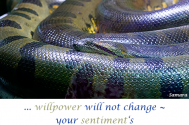 willpower-will-not-change--your-sentiment-s-inner-state