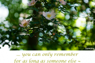 you-can-only-remember--for-as-long-as-someone-else--is-keeping-up-the-memories