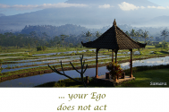 your-Ego-does-not-act-as-your-life-s-host
