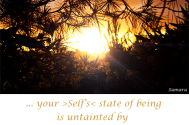 your-Self-s-state-of-being-is-untainted-by-identifications
