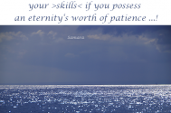 your-are-only-able-to-show-your-skills-if-you-possess-an-eternity-s-worth-of-patience