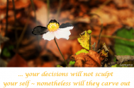 your-decisions-will-not-sculpt-your-self--nonetheless-will-they-carve-out-your-tendency-towards-darkness-or-light