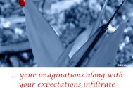 your-imaginations-along-with-your-expectations-infiltrate-your-reactions