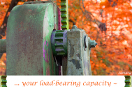 your-load-bearing-capacity--will-never-exceed-its-competence