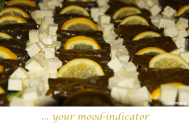 your-mood-indicator-resides-with-your-nutrition