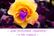 your-pretended-inability--is-the-request--to-forgo-inherent-blockades
