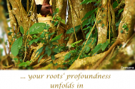 your-roots-profoundness-unfolds-in-the-custody-of-spiritual-serenity