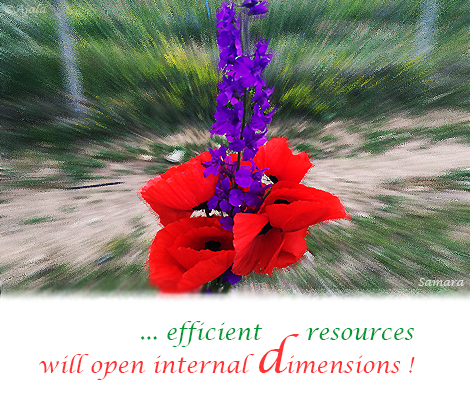efficient-resources-will-open-internal-dimensions
