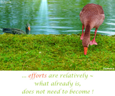 efforts-are-relatively--what-already-is.-does-not-need-to-become