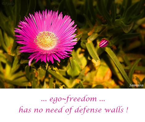 ego--freedom-has-no-need-of-defense-walls