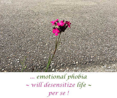 emotional-phobia--will-desensitize-life--per-se