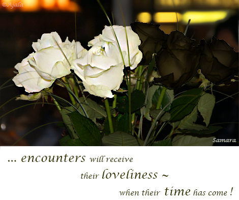 encounters-will-receive-their-loveliness--when-their-time-has-come