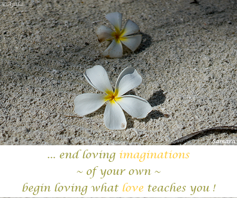 end-loving-imaginations-of-your-own--begin-loving-what-love-teaches-you