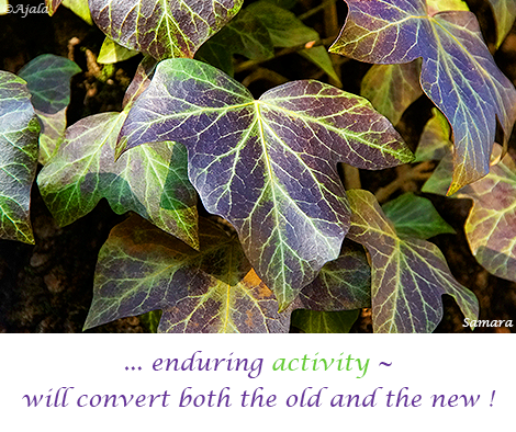enduring-activity--will-convert-both-the-old-and-the-new