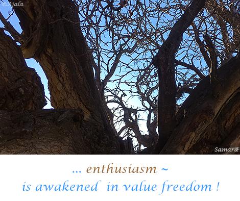 enthusiasm--is-awakened--in-value-freedom